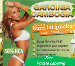 Wholesale Garcinia Cambogia Supplement Free Private Labeling