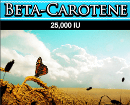 Wholesale Beta Carotene Supplement Wholesale Vitamins Distributor Supplement Supplier