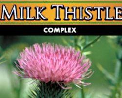 Wholesale Private Label Milk Thistle Supplement