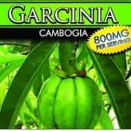 Private Label Garcinia Cambogia 800MG Wholesale Weight Loss Supplements