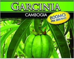Wholesale PRIVATE LABEL GARCINIA CAMBOGIA 800mg Supplement