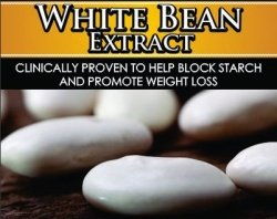 Private Label White Bean Extract Starch Blocker Supplement Distributor- FREE PRIVATE LABELING