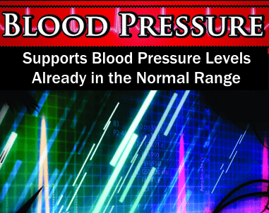 Wholesale Private Label Blood Pressure Support Supplement | Wholesale Vitamin Distributor Supplement Reseller