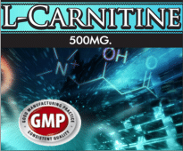 Wholesale L-Carnitine Supplement Supplier