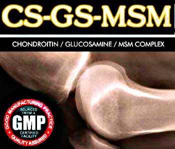 Private Label Joint Supplement CS-GS-MSM
